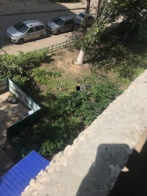 В Тольятти женщина погибла при падении с высоты