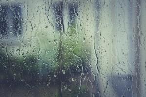 Синоптики объяснили аномальные дожди и паводки в России
