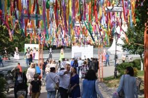 Многонациональная Самарская земля отмечает День дружбы народов этнофестивалем «Все мы – Россия!»