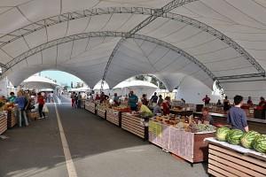 В Самаре открылитсь пять сельскохозяйственных ярмарок