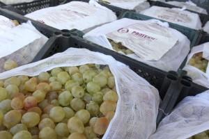 Самарские таможенники выдворили в Казахстан 20 тонн винограда