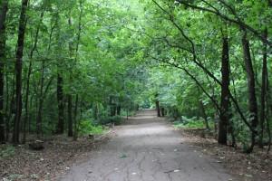 Чиновники планируют наложить вето на застройку парка 60-летия Советской власти в Самаре