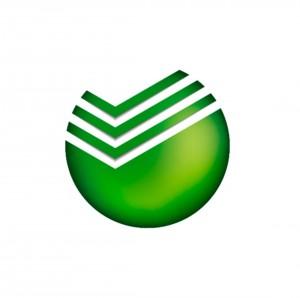 Сбербанк принял участие в Цифровой прокачке Самарской области