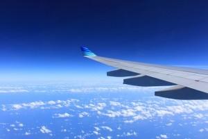Самолёт Аэрофлота посадили в Ростове из-за пассажира с травматом