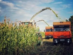 Дмитрий Азаров поздравил аграриев с Днем работников сельского хозяйства и перерабатывающей промышленности