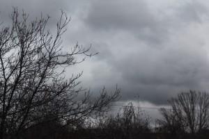 Жителей Самарской области предупреждают о сильном ветре
