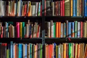 В Самаре откроется модельная библиотека