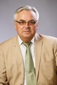 Главным претендентом на должность сейчас является 67-летний Петр Лобарев, который является депутатом думы Сызрани нескольких созывов.