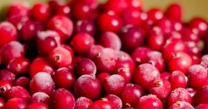 По словам эксперта, аллергия на данную красную ягоду встречается достаточно редко.
