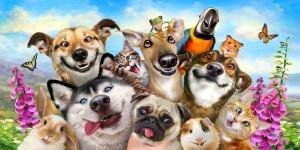 Конкурс Семейный зоо-портрет проведут в Самарском зоопарке