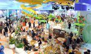 Самарская область начала подготовку к участию в крупнейшей сельскохозяйственной выставке «Зелёная неделя-2020»