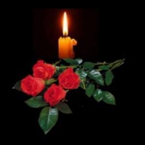«Мы глубоко скорбим о погибших и желаем скорейшего выздоровления всем, кто пострадал в этом дорожно-транспортном происшествии».