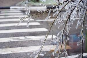 По данным центра погоды «Фобос», небольшое похолодание начнется только в ночь на среду.