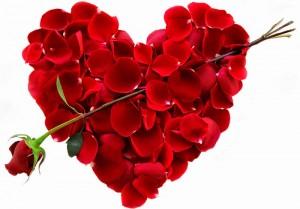 Цветы на 14 февраля - пусть все девушки и женщины будут счастливы