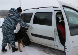 В Тольятти полицейская собака нашла наркотики в машине