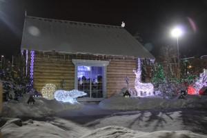На площади Куйбышева поставлен новогодний рекорд Самары