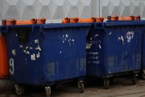 В Самаре за новогодние праздники вывезли более 14 тонн мусора