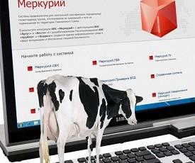 Результаты работы мониторинговой группы в ГИС «Меркурий» Управления Россельхознадзора по Самарской области.