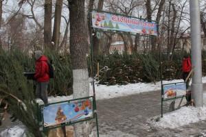 В Самаре новогодние елки переработают в щепу и раздадут жителям