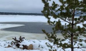 Необычное зимнее половодье привело к изменению органолептических свойств волжской воды.