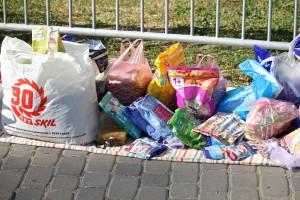 Самарцы могут сдать корм и вещи для бездомных животных