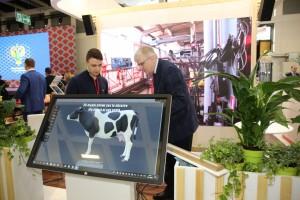 Наибольший интерес вызвал инновационный продукт Самарского аграрного госуниверситета — интерактивный анатомический 3D-атлас коровы, созданный совместно с СамГМУ.