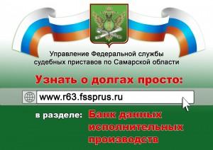 В Самарской области начнут проверять граждан на долги
