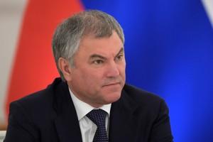 Как считает спикер Госдумы, знаменитость должна ответить по закону за оскорбление соотечественников.