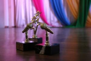 В Самарском регионе пройдет конкурс Хрустальные звездочки