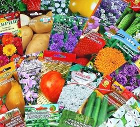 Рынок семян овощных и цветочных культур в Самарской области представлен большим разнообразием агрофирм, как отечественных, так и зарубежных.