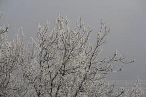 В Самарской области объявлен жёлтый уровень опасности из-за снега