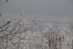 В Самарской области прогнозируют морозы Повсеместно пройдёт снег.