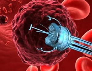 Ученые изучили свойства некоторых дезоксирибозим, способных распознавать патогенные молекулы РНК и разрезать их.