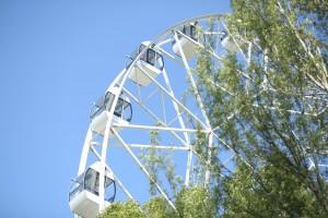 Летний театр в Струкачах, колесо обозрения в парке Гагарина и катамараны на Металлурге будут охранять по ночам
