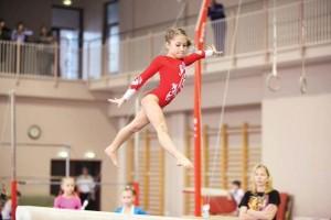 В соревнованиях выступят девушки и женщины (16 лет и старше) в 4 видах программы.