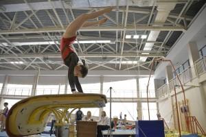 В них приняли участие сильнейшие гимнастки региона.