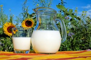 Роскачество рассказало о пользе и вреде молока на растительной основе