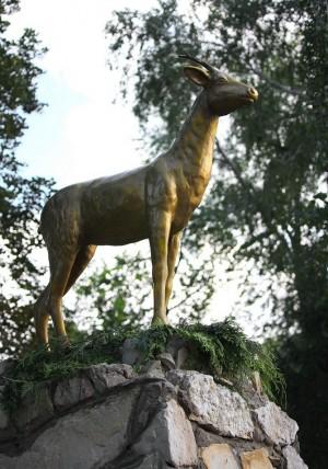 В Самаре на улице Фрунзе хотят открыть музей в честь символа города – козы