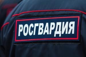 В Самаре угонщик пытался спрятаться от сотрудников Росгвардии на крыше гаража
