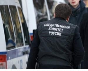 В социальной сети появилось сообщение о том, что стая бродячих собак напала на 8-летнюю девочку в Волгоградском посёлке Самарской области.