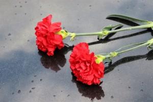 """""""Вечером 11 марта 2020 года тело школьницы, закопанное в землю, обнаружено в лесном массиве города Котовска"""""""