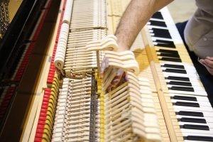 В период карантина сотрудники филармонии занимаются профилактикой и ремонтом оборудования и музыкальных инструментов.