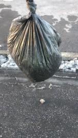 В Самарской области мужчину задержали мужчину с пакетом конопли