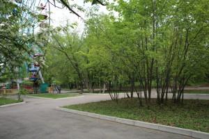 Стало известно, когда самарские парки будут обрабатывать от клещей