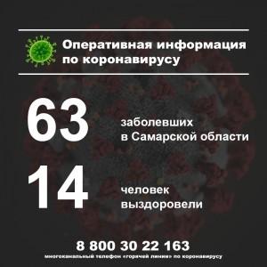 В Самарской области за истекшие сутки выявили еще 13 больных коронавирусом