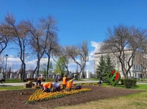 В Самаре началась высадка цветов на значимых городских объектах
