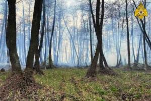 За нарушение пожарной безопасности на земельных участках в условиях особого противопожарного режима предусмотрена административная ответственность.