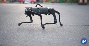 Это железная собачка породы Unitree Robotics А1.