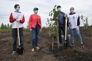 В Самаре для посадки деревьев в память о погибших на фронтах определена территория у озера, прилегающая к стадиону «Самара Арена».