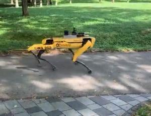 Робот-собака от Boston Dynamics начал проверять дистанцию между людьми в сингапурском парке